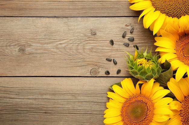 Sonnenblume mit samen auf grauem hintergrund mit kopienraum. ansicht von oben