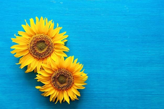 Sonnenblumenblüten und sonnenblumenkerne auf einem hölzernen blauen hintergrund