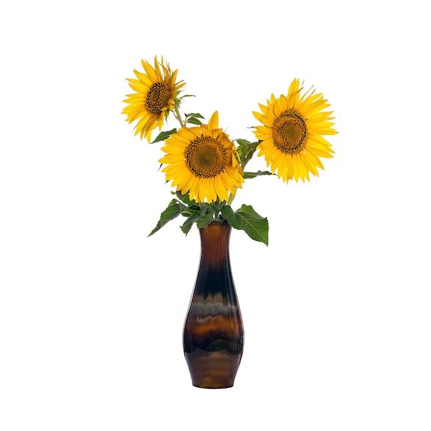 Sonnenblumenblumen in einer alten porzellanvase isoliert auf weißem hintergrund