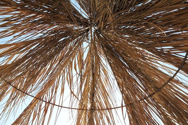 Sonnendach aus trockenen gelben palmblättern