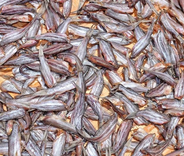 Sonnengetrockneter kleiner fisch hintergrund Premium Fotos
