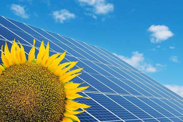 Sonnenkollektoren auf einem solarpark und sonnenblumen unter blauem himmel