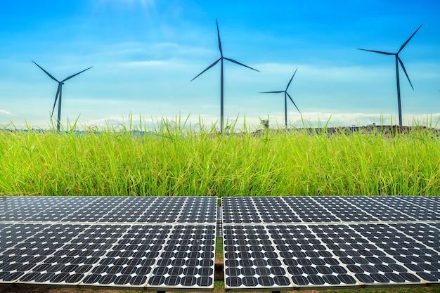 Sonnenkollektoren auf getreidefeld und reis goldenes gelb mit windkraftanlagen gegen mountanis