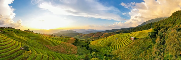Sonnenlicht in der dämmerung der reisfarmlandschaft. terrassierte reisfelder pa bong piang, mae chaem, chiang mai thailand