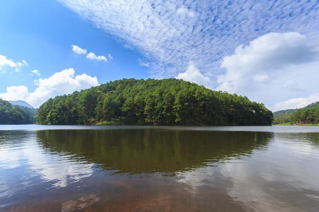 Sonnenschein bei pang-ung, kiefernwaldpark, mae hong son, nördlich von thailand