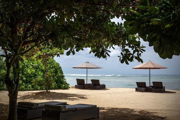 Sonnenschirm und liege am strand unter exotischen bäumen