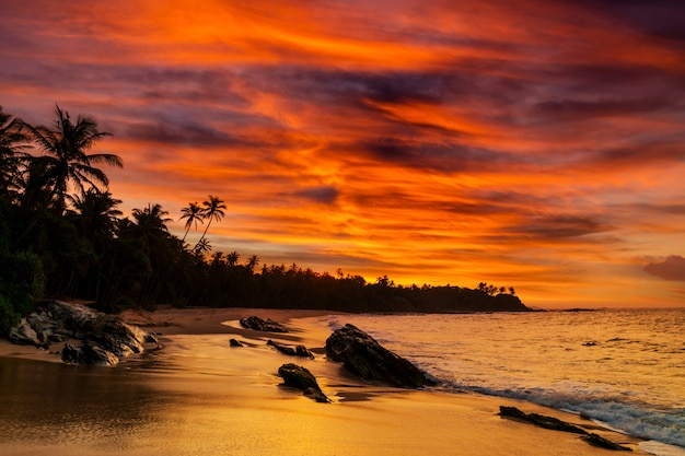 Sonnenuntergang am felsigen ufer des tropischen meeres
