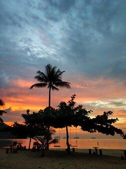 Sonnenuntergang am meer. silhouetten eines mädchens, das eine schaukel reitet.