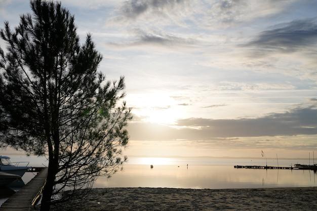 Sonnenuntergang am see-strand wilde baumschattenbild in landes biscarrosse frankreich