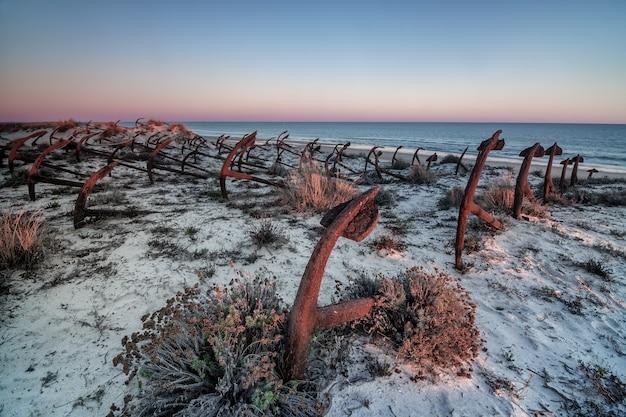 Sonnenuntergang am strand von barril, friedhof der anker. tavira