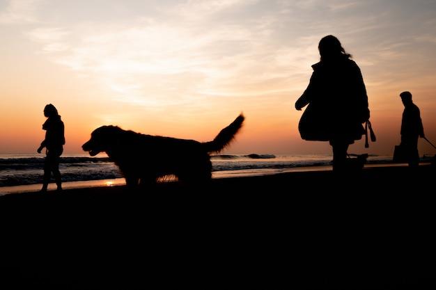 Sonnenuntergang an einem wunderschönen strand, während sie an einem wunderschönen tag in portugal mit den hunden spazieren gehen