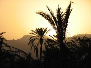 Sonnenuntergang in fujairah