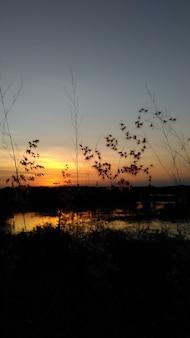 Sonnenuntergang telefonwand