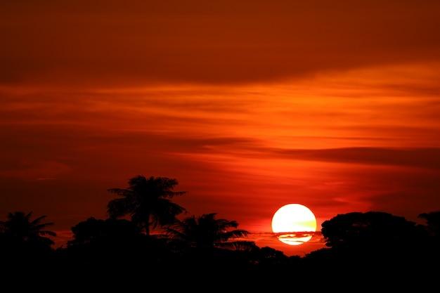 Sonnenuntergang und bunter flammenwolken-schattenbildbaum auf rotem himmel