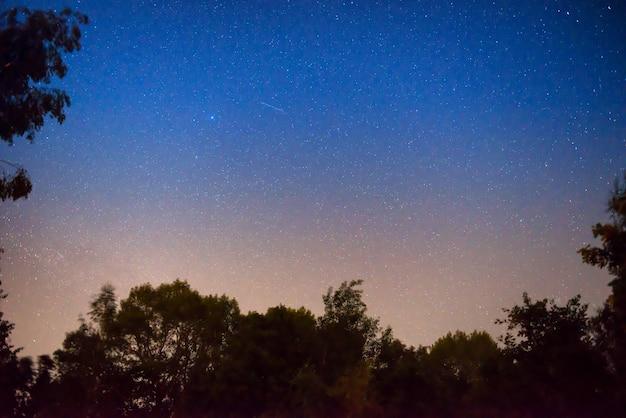 Sonnenuntergang und nacht dunkelblauer himmel im wald mit hellen sternen als weltraumhintergrund