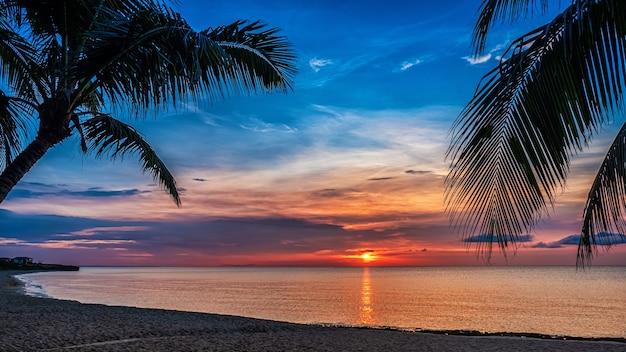Sonnenuntergang und palmen - naturhintergrund.