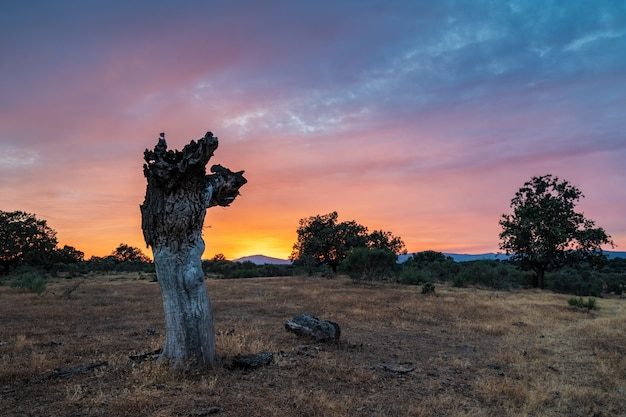 Sonnenunterganglandschaft nahe guijo de galisteo. extremadura. spanien.