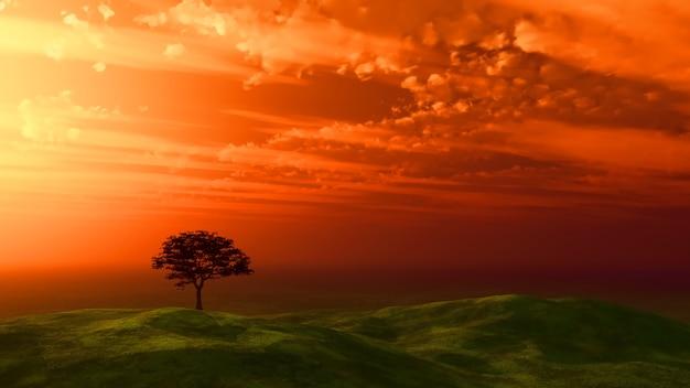 Sonnenuntergangsbaum