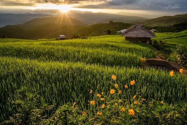 Sonnenuntergangslandschaft an bergen nördlich von thailand.