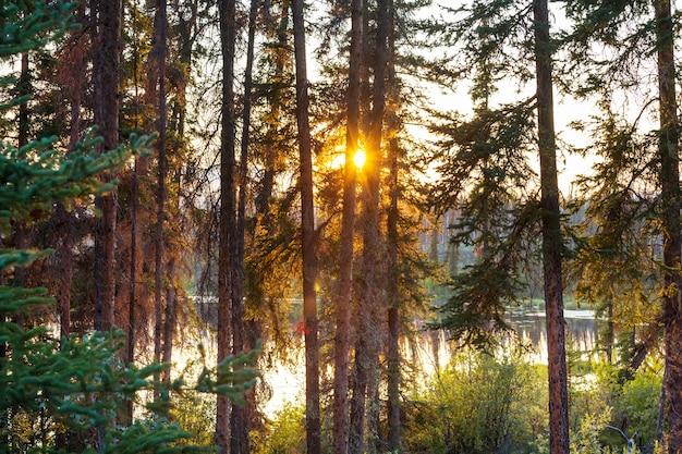 Sonnenuntergangsszene auf dem see bei sonnenuntergang