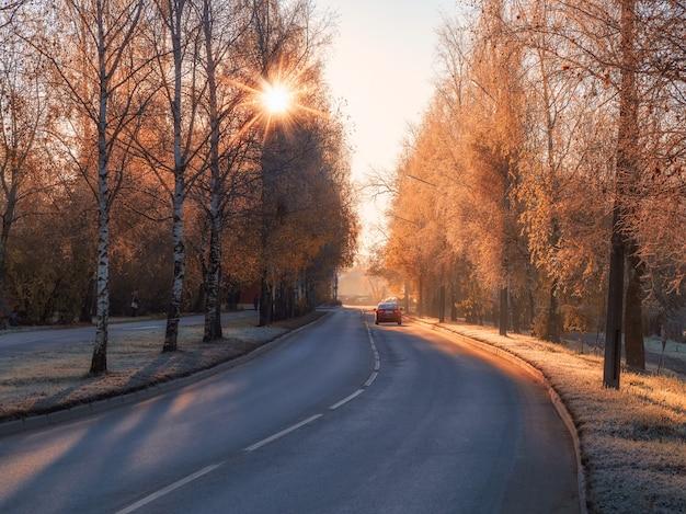 Sonnige herbststraße. biegen sie auf die asphaltierte straße ab. die straße der stadt im sonnigen frostigen tag des herbstes autos auf der herbststraße. weicher fokus.