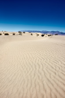 Sonnige landschaft der mesquite flat sand dunes im death valley national park, kalifornien - usa