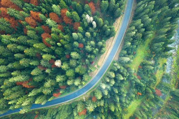 Sonnige landschaft des karpatenberges