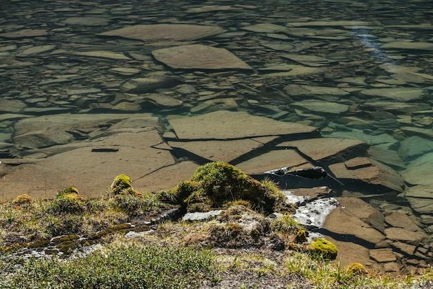 Sonnige schöne landschaft mit moosen und gräsern auf steinen in der nähe des wasserrandes des bergsees im sonnenlicht. malerische landschaft mit bergflora am rande des gletschersees. klares wasser des gletschersees.