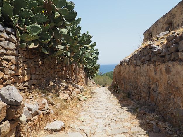Sonnige strandbuchtansicht des schönen griechischen sommers zum blauen mittelmeermeer