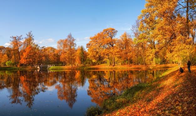 Sonniger öffentlicher herbstpark mit goldenen bäumen über einem teich