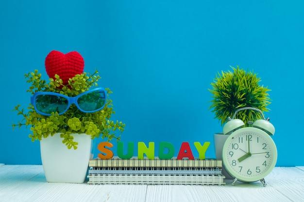 Sonntag beschriftet text und notizbuchpapier, wecker und wenig dekorationsbaum auf holz