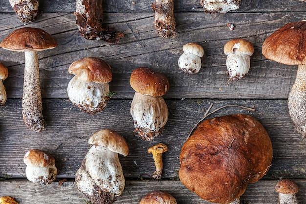 Sorte rohe essbare pilze penny bun boletus leccinum auf rustikalem tisch. steinpilze über dunklem holzhintergrund