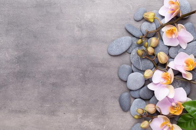Spa-aromatherapie, flache lage verschiedener schönheitspflegeprodukte, verziert mit einfachen orchideenblüten.