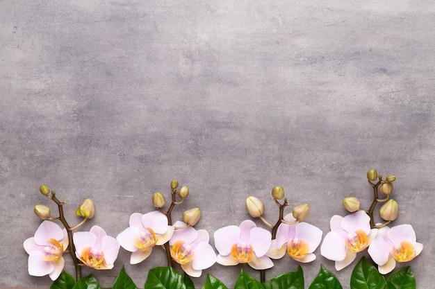 Spa-aromatherapie-hintergrund, flache lage verschiedener schönheitspflegeprodukte, verziert mit einfachen orchideenblumen.