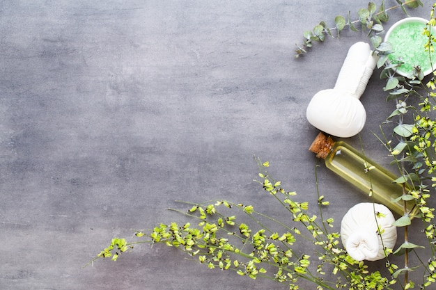 Spa-behandlungskonzept, flache zusammensetzung mit natürlichen kosmetikprodukten und massagepinsel