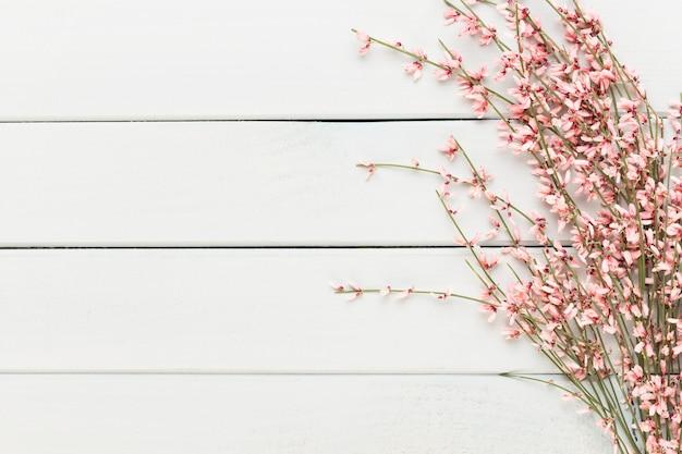 Spa-hintergrund mit platz für einen text. spa wells aromatherapie thema, handgemachte kosmetik
