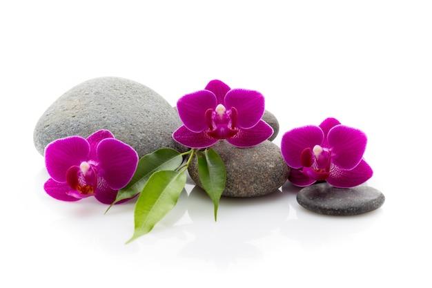 Spa masage steine und orchidee lokalisiert auf dem weißen hintergrund.