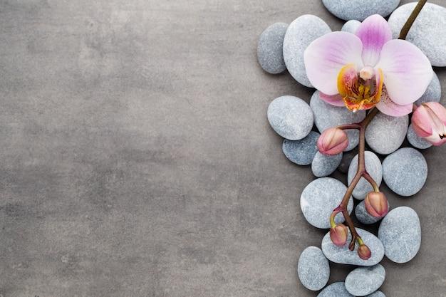 Spa orchideenthema objekte auf grau