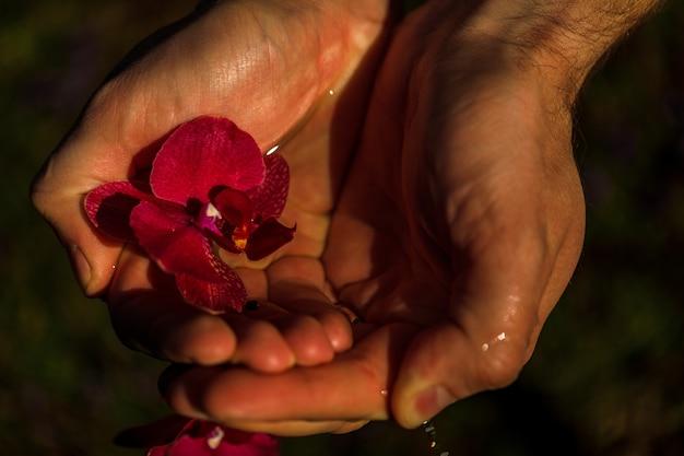 Spa- und wellnessdetails. männliche hände mit orchideen im wasser. man spa-konzept.