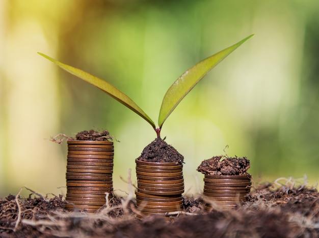 Sparen sie geld und kontobanking-wachstumsfinanzierungsgeschäftskonzept