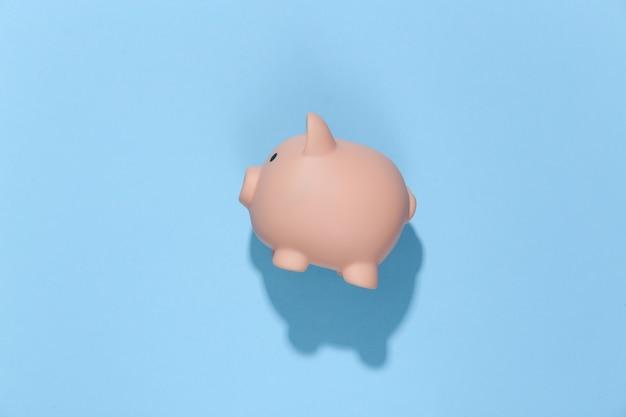 Sparschwein auf einem blauen sonnigen hellen.
