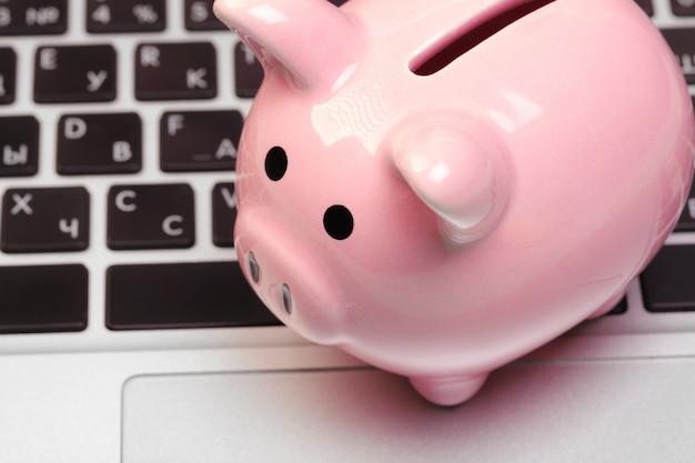 Sparschwein auf laptop