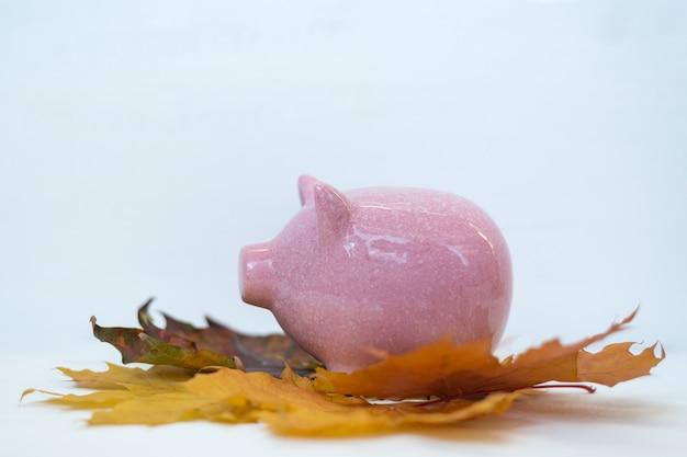 Sparschwein, das auf herbstlaub auf weißem hintergrund steht. herbstrabatte black friday-konzept.