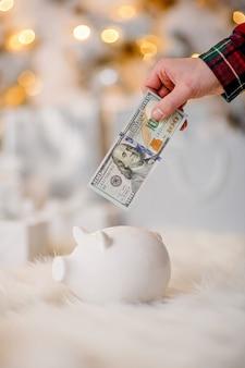 Sparschwein mit 100 dollar banknote