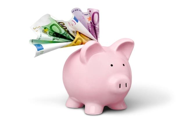 Sparschwein mit banknoten
