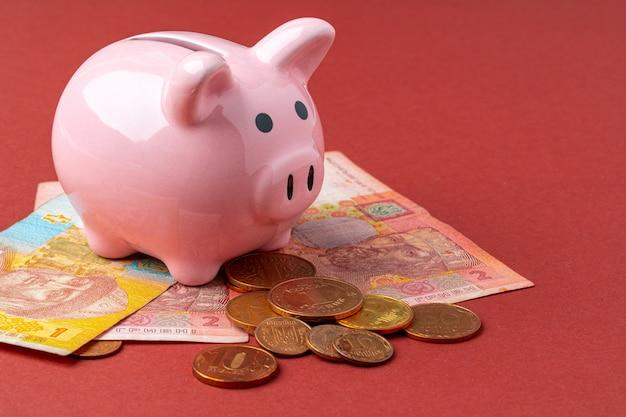 Sparschweingeldkasten mit ukrainischem geld