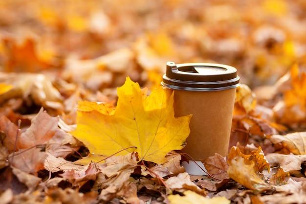 Spazieren sie mit einer tasse heißem kakao im herbstpark. basteln sie eine tasse kaffee auf der straße mit gelben laub