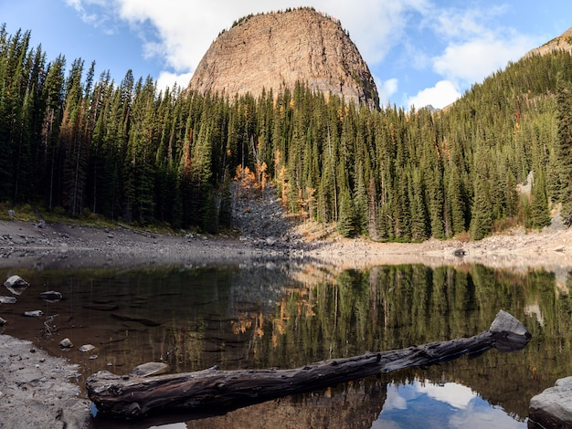 Spiegelsee mit kiefernwaldreflexion auf teich in lake louise am banff-nationalpark