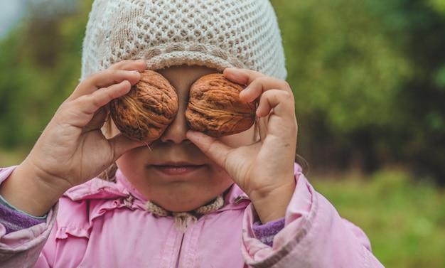 Spielen im freien niedliches kleines mädchen, das eine nüsse vor ihr hält. nüsse ernten. herbst im garten, das schöne mädchen und die großen nüsse.