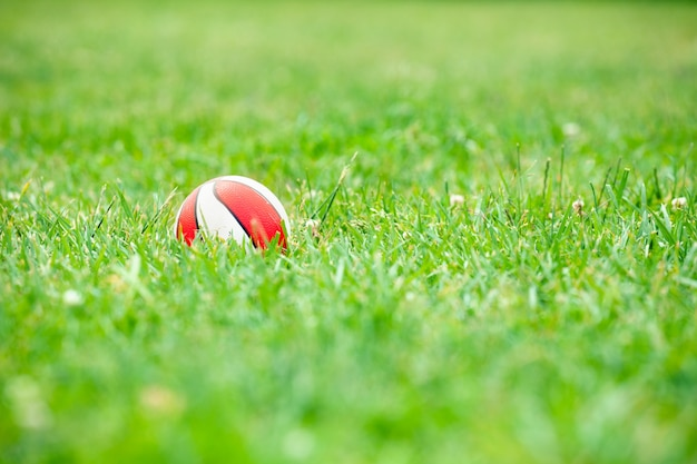 Spielzeugball im grünen gras